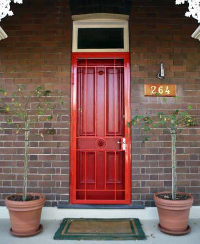 High Security Storm Door